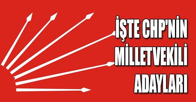 İl İl CHP'nin 1 Kasım Milletvekili Adayları