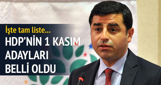 HDP'nin 81 İlde Gösterdiği Erken Seçim Adayları