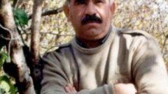 Teröristbaşı Öcalan'a göre HDP'nin oy oranı