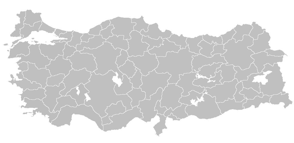 Türkiye'nin önündeki zorlu 45 gün